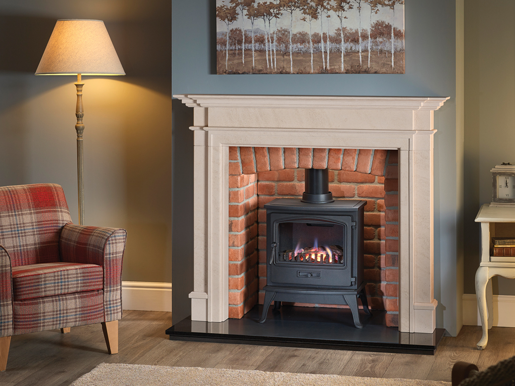Traditional Gas Stoves Contemporary Fireplace By Capital